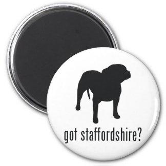 Amerikaanse Staffordshire Terrier Magneet