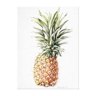 Ananas 1997 canvas afdrukken