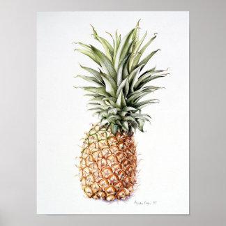 Ananas 1997 poster