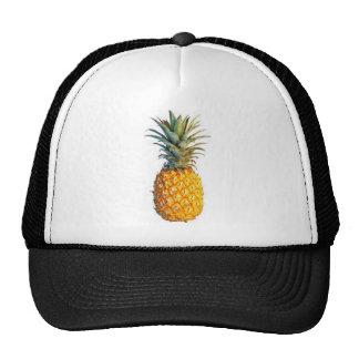 ananas pet
