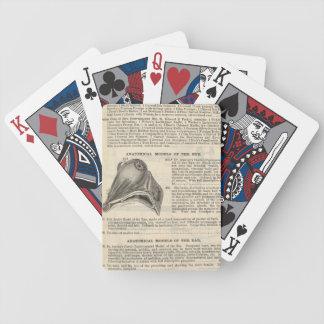 Anatomisch Model van het Oog Poker Kaarten