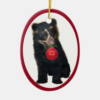 Andes draag het Ornament van de Stichting 2011