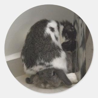 Andora het konijntje: Afkeuring Ronde Sticker
