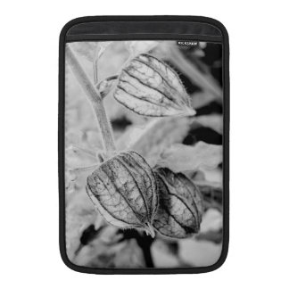 Angulata van Physalis Beschermhoes Voor MacBook Air