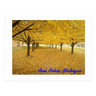 Ann Arbor in Herfst Briefkaart