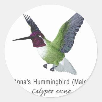 Anna het Mannetje van de Kolibrie met Naam Ronde Sticker