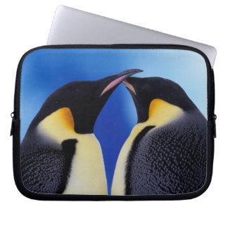 Antarctica, de Pinguïn van de Keizer (Aptenodytes  Computer Hoes