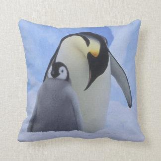 Antarctica. De pinguïnen en het kuiken van de Sierkussen