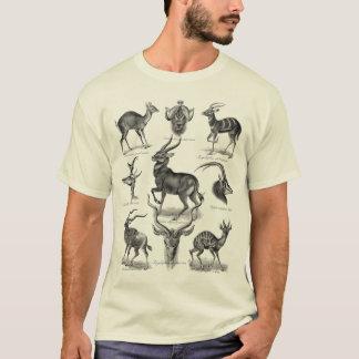 Antilopen T Shirt