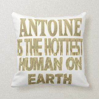 Antoine Pillow Sierkussen