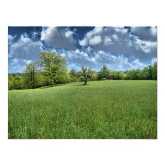 Appalachian Groene Druk van de Foto