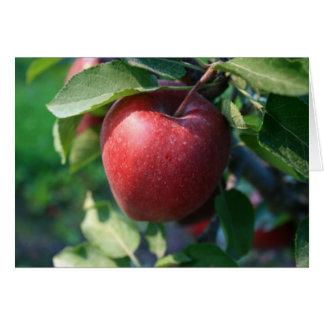 Apple Kaart
