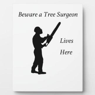 Arborist van de Chirurg van de boom bij het werk Fotoplaat