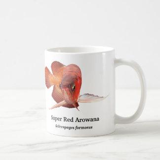 Asian Arowana Koffiemok