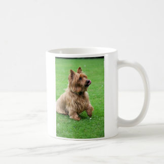 Australische hond I van Terrier de mok van het