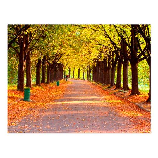 Autumn forest briefkaart