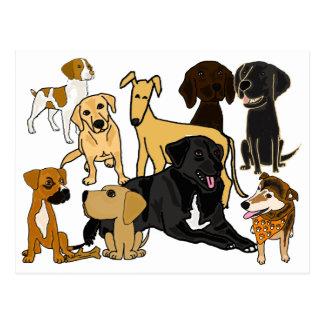 BA het geweldige Briefkaart van de Honden van het