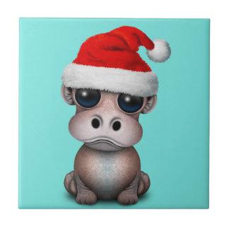 Baby Hippo die een Pet van de Kerstman dragen Tegeltje