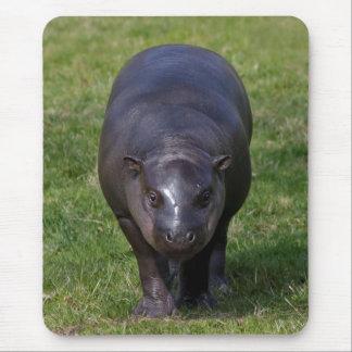 Baby Hippo Mousemat Muismat