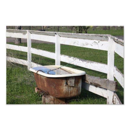 Bad op het Boerderij Fotoprints