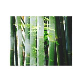 Bamboe - de Kunst van het Canvas - de Caraïben