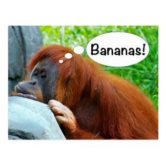 Bananen! Briefkaart