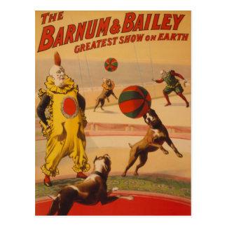 Barnum & Vestingmuur - de Prachtige Honden van het Briefkaart