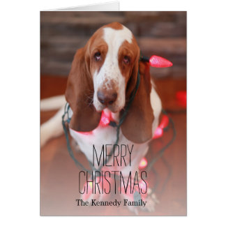 basset hond, Kerstmis, Kerstmislichten Kaart