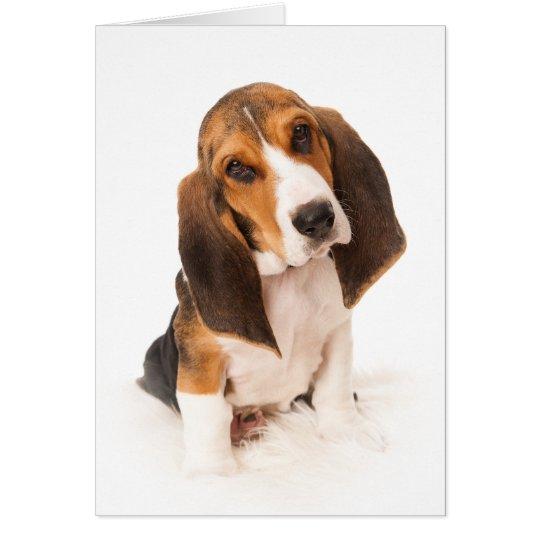 Basset hound puppy kaart