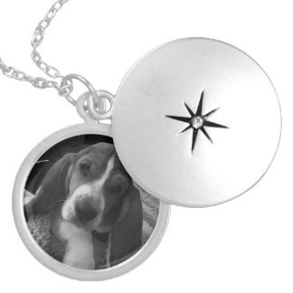 Basset Puppy Zilver Vergulden Ketting