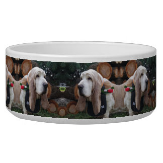 Basset van de hondKom hond Voerbakje