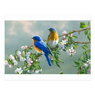 be*kijken-schilderij-bloem-vogel-dier-Desktop-l Briefkaart