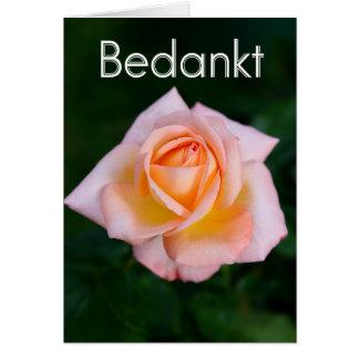 Bedankt - dank u in het Nederlands met sinaasappel Briefkaarten 0