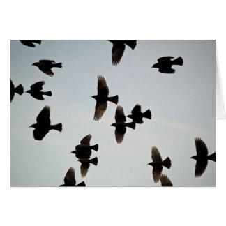 Bedankt voor de Vleugels Briefkaarten 0