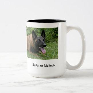 Belgische mok Malinois