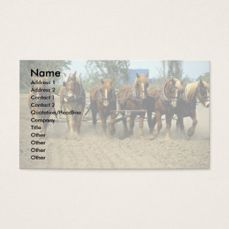 Belgische paarden die ploegen, zes-omhoog, het visitekaartjes