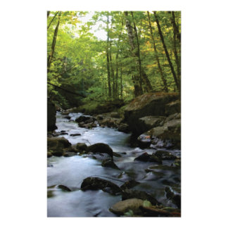 bemoste stroom in het bos briefpapier