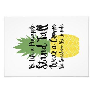 Ben als een Druk van de Ananas Foto