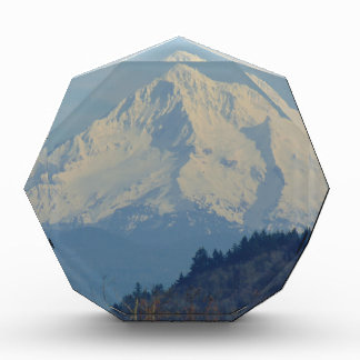 Berg Acryl Prijs