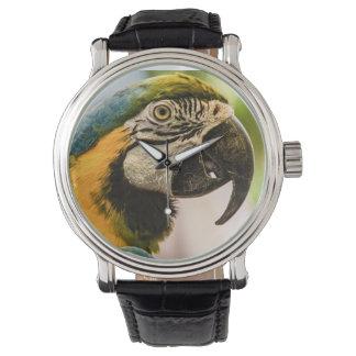 Bespreking zoals een Horloge van de Piraat