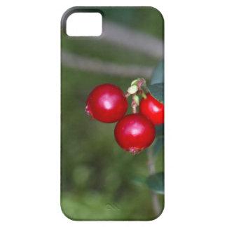 Bessen van wilde lingonberry (Vaccinium Barely There iPhone 5 Hoesje
