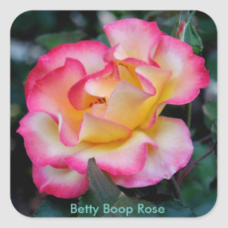 Betty Boop Rose Vierkante Sticker