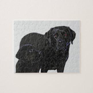 Bewondering in het Oog van het Puppy - Zwart Legpuzzel