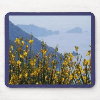 Bezem op de kust van Cinque Terre Muismatten