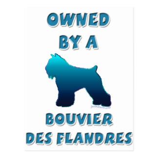 Bezeten door Bouvier des Flandres Briefkaart