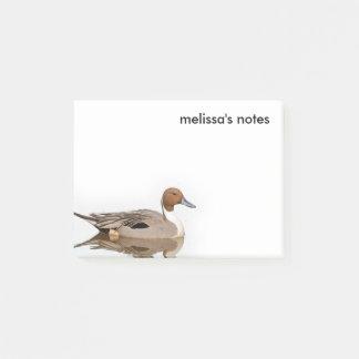 Bezinningen van een Noordelijke Eend van de Post-it® Notes