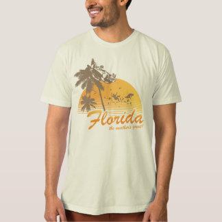 Bezoek Florida, het Grote Weer - orkaan T Shirt