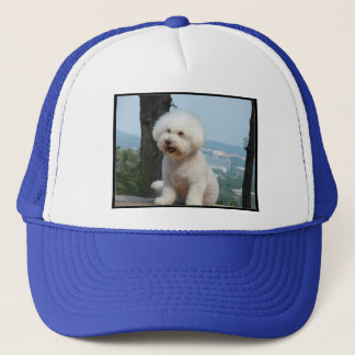 Bichon Frise Trucker Pet