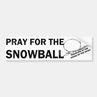 Bid voor de Sneeuwbal (LG) Bumpersticker