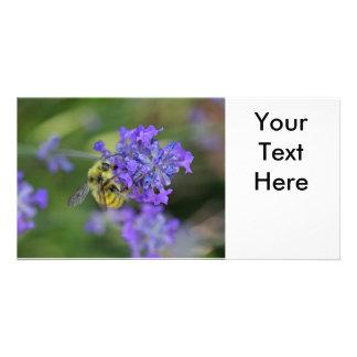 Bij op de Foto van de Lavendel Kaart